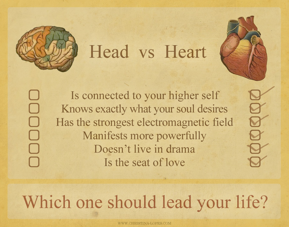 heart and mind Hearts and minds is a 1974 american documentary film about the vietnam war directed by peter davis hearts and minds displays more than enough heart it is mind that is missing perhaps the deepest flaw lies in the method.
